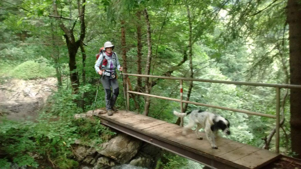 Wandern auf der Brücke am Bärgündle-Wasserfall