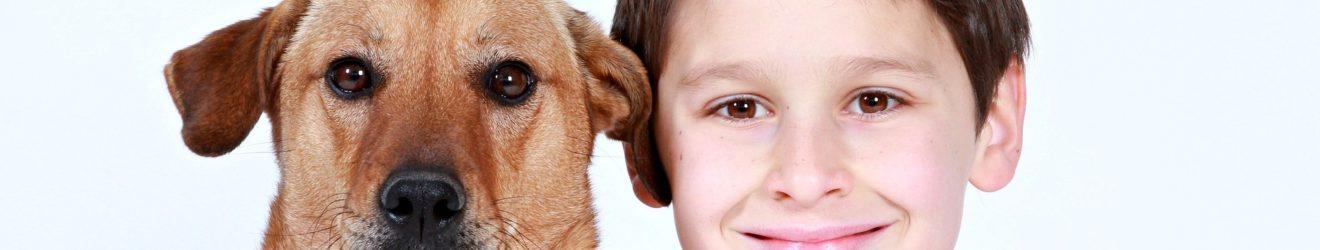 Hund mit Junge happy