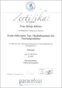 Zertifikat Erste Hilfe beim Tier / Notfallmedizin für THP